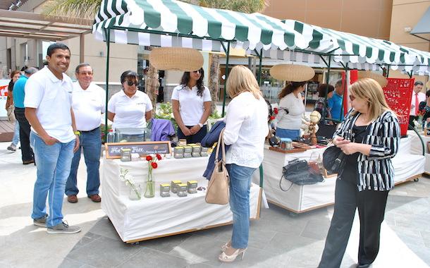 Distintos stand ofrecen productos y servicios (Foto OvalleHOY.cl)