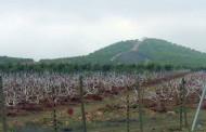 CIREN da a conocer en Ovalle inicio de trabajo de Catastro Frutícola Región de Coquimbo