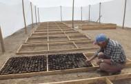En vivero comunidad agrícola de Combarbalá reproducirá especies nativas