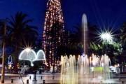 Esta noche se enciende el Árbol de Navidad en Ovalle