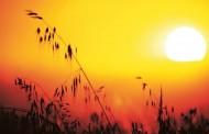 Decretan Alerta Temprana Preventiva en la región por incendios forestales