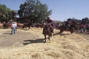 A pesar de la sequía realizan buen balance de fiesta de Barraza