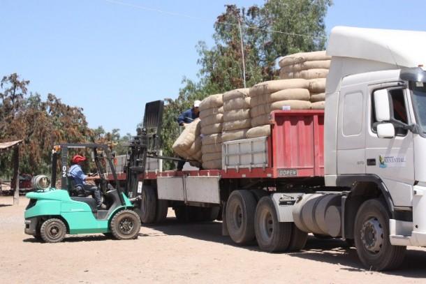 Un 18,2% descendieron las exportaciones regionales durante octubre