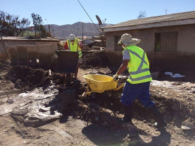 Desocupación en la provincia del Limarí registra un leve descenso
