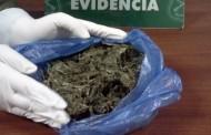 Decomiso de 300 kilos de marihuana no arroja detenidos