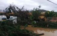 Galería Multimedia: Lo que dejó la lluvia y el viento en la Provincia