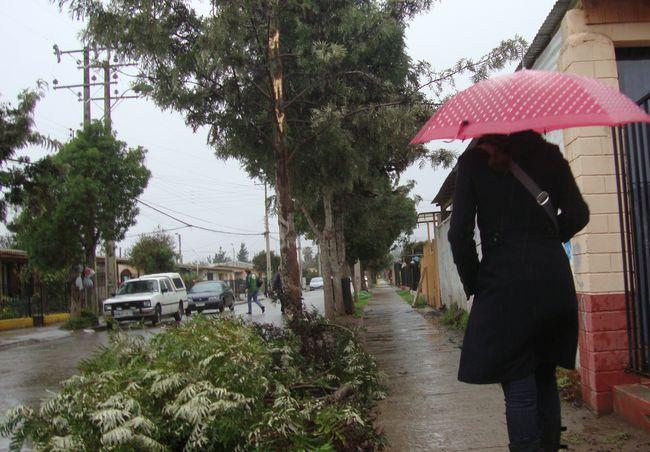 Actualizan Alerta Temprana Preventiva para la región de Coquimbo por sistema frontal