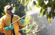 INIA advierte sobre riesgos de excesos de agroquímicos en hortalizas