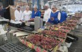 Desempleoen la región de Coquimbo llega al 6,9% tras leve alza