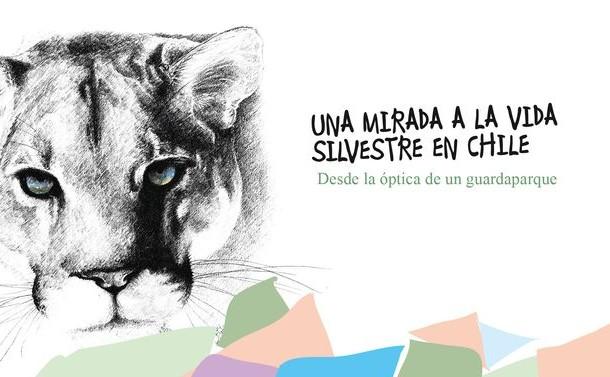 Este miércoles será presentado oficialmente en Ovalle libro de Mario Ortiz Lafferte