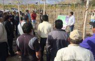 Agricultores de Río Hurtado realizarán Gira Tecnológica en Vicuña