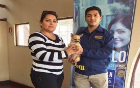 PDI entrega recomendaciones para evitar el robo y pérdida de mascotas