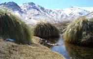 Anuncian lluvia y nieve para la provincia de Limarí este fin de semana