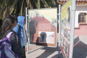 En muestras paralelas Museo del Limarí destaca patrimonio fotográfico regional