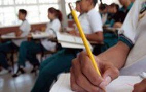 Una polémica que se instala ¿Colegios mixtos o diferenciados?
