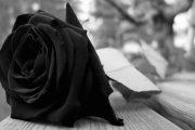 Obituarios de hoy domingo 24 de junio