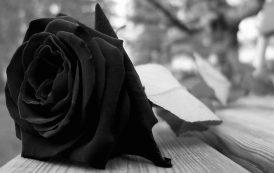 Joven mujer ovallina fallece en trágicas circunstancias en La Serena