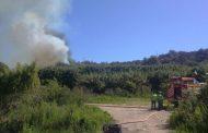 Se decreta Alerta Roja por Incendio en sector de Santa Catalina