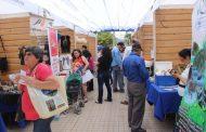 Emprendedores limarinos mostraron toda su creatividad en encuentro de Ovalle