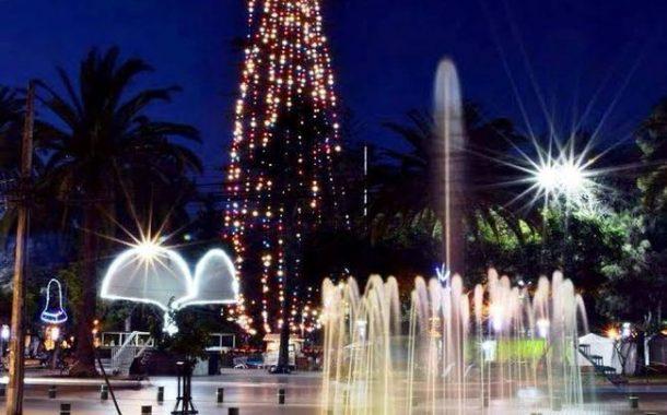 Encenderán luces del árbol natural de navidad más grande de Chile