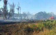 Incendio de pastizales se extiende y destruye una vivienda