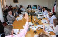 Consejo Regional de Coquimbo vota a favor de proyecto minero Dominga