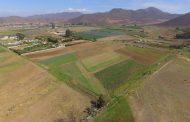 Con drones complementan estudio de uso de suelos agrícolas