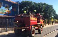 Incendio de pastizales en El Trapiche moviliza a bomberos