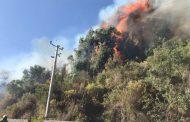 Sospechosa la cuestión: segundo incendio de matorrales en la ruta D- 505