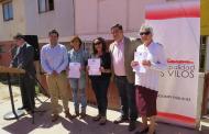Familias podrán combatir las termitas a través de subsidios