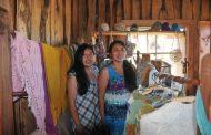 Etno turismo: Un ovallino en el Lago Budi