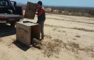 Liberan ejemplar de zorro chilla tras tres meses de cuidados en centro de rescate