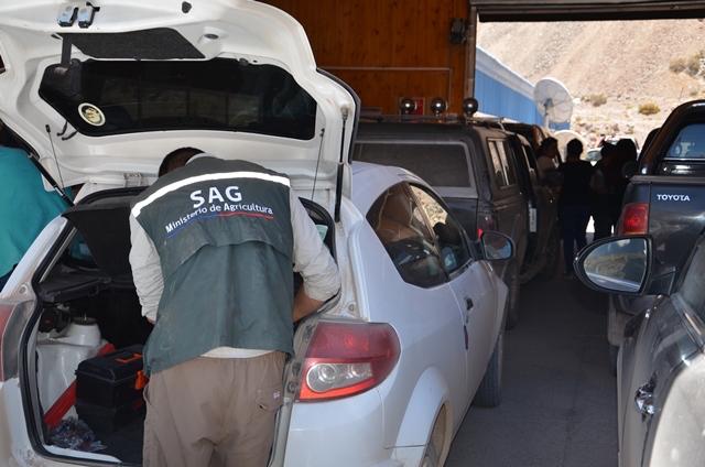 84 mil personas han ingresado a Chile por Paso Agua Negra en tres meses