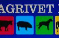 Agrivet: pasión por los amigos de cuatro patas