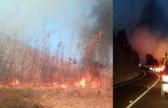 Incendios forestales encienden las alertas amarillas en Ovalle y Monte Patria