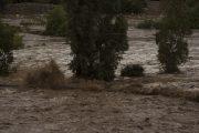 Piden declarar Emergencia Agrícola a regiones de Coquimbo y Atacama