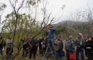 Agricultores de Río Hurtado aprenden sobre poda de frutales