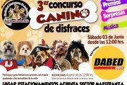 Invitan a todos los perritos ovallinos a concurso de disfraces
