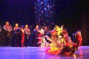 "Ballet Folklórico Nacional deslumbró a ovallinos con obra ""Canto para una Semilla"""