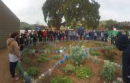 Estudiantes de Barraza dicen Alto al Desierto reutilizando el agua de los lavamanos