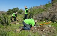 Más de 40 jóvenes realizan trabajos voluntarios en el Parque Nacional Fray Jorge