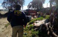Investigan hallazgo de dos cadáveres en Ovalle