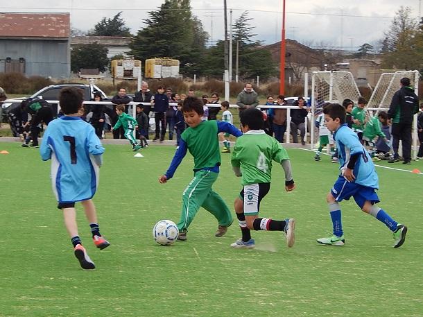 Niños futboleros ovallinos tendrán flor de panorama