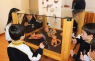 Últimos días para ver imperdible exposición de arte joven en el Museo del Limarí
