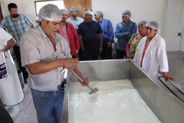 Crianceros de Río Hurtado adquieren nuevas técnicas para la elaboración artesanal de Quesos de Cabra