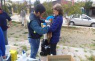 Operativo de vacunación contra la rabia se hizo en la provincia del Limarí