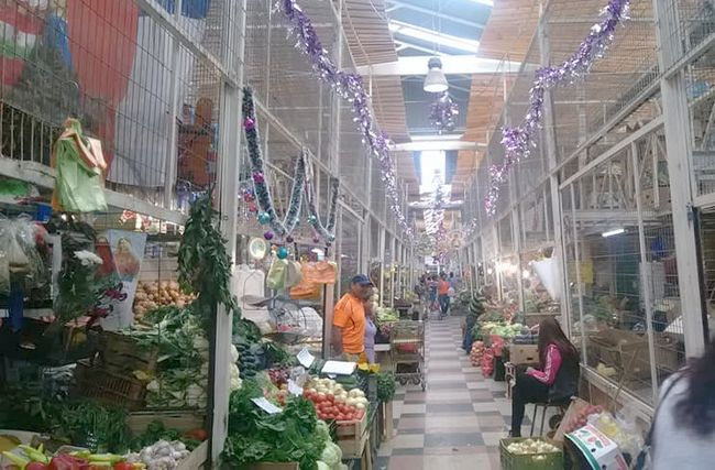 Cinco días consecutivos funcionará la Feria Modelo estas fiestas de Navidad