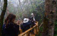 Con nueva infraestructura en el Parque Fray Jorge buscan potenciar el turismo en el Limarí