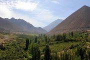 Invitan a tour gratuito por valle Mostazal