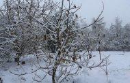 Sistema frontal trae temperaturas bajo cero y precipitaciones al Limarí